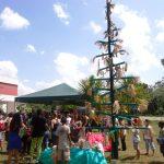 Natal Cultural do PCT Guamá envolve artistas e comunidades da Terra Firme