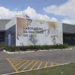Laboratório da Qualidade do Leite promove minicurso sobre processamento de queijo e requeijão