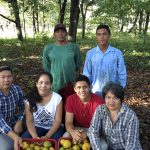 Organic farm from Pará gets international prominence