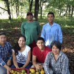 Fazenda orgânica paraense ganha destaque internacional