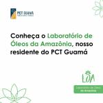 Química e biotecnologia inovadoras para uma Amazônia sustentável