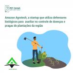 Startup paraense cria defensores biológicos para auxiliar no controle de doenças e pragas de plantações da região